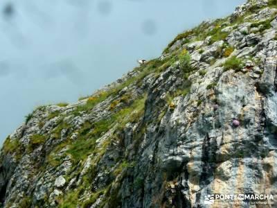 Descenso Sella - Lagos de Covadonga; viaje senderismo; senderismo y excursiones;escapadas fin de sem